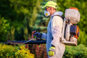 Mosquito Treatment San Diego, CA | San Diego Pest Management