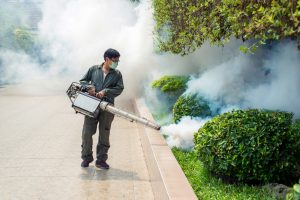 Pest Control San Diego | Mosquito fogging treatments | Flying insect control San Diego | San Diego Pest Management